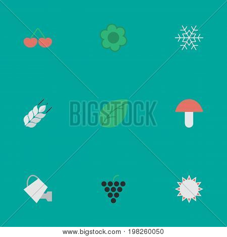 Elements Wine, Bailer, Sheet And Other Synonyms Wheat, Fungus And Sheet.  Vector Illustration Set Of Simple Gardening Icons.