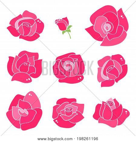 Vector set with line roses. Hand-drawn flowers with with contours for background greeting cards and invitations of the wedding, birthday, Valentines Day