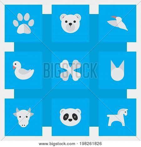 Elements Bear, Panda , Cat Synonyms Crane, Cat And Bird.  Vector Illustration Set Of Simple Animals Icons.