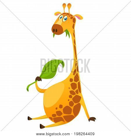 Cartoon cute giraffe chewing green leaf. Vector illustration isolated on white
