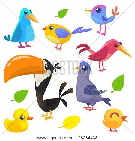Cute cartoon birds collection. Cartoon set of colorful birds. Vector illustration