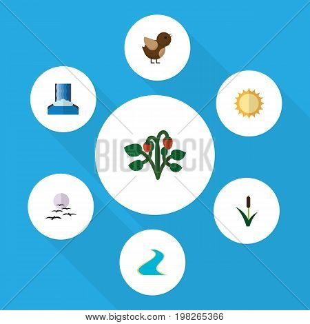 Flat Icon Ecology Set Of Bird, Solar, Cattail And Other Vector Objects