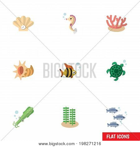 Flat Icon Marine Set Of Conch, Octopus, Seaweed And Other Vector Objects