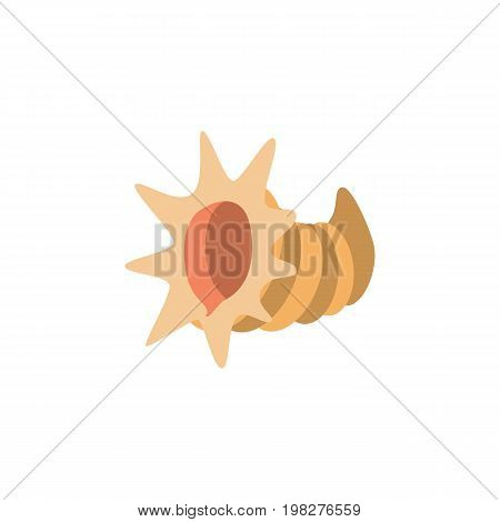 Seashell Vector Element Can Be Used For Cockleshell, Seashell, Scallop Design Concept.  Isolated Cockleshell Flat Icon.