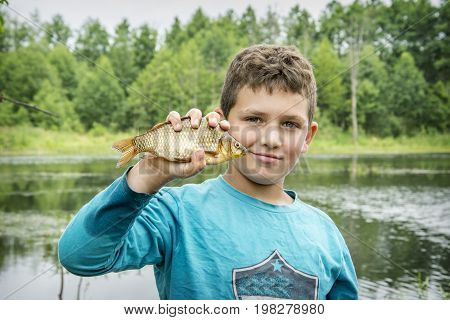 In the summer on a fishing little curly boyl caught a large carp.