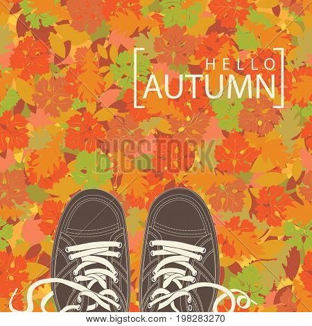 Autumn banner with the words Hello autumn and brown shoes on the background of seamless texture of colorful autumn leaves. Vector illustration