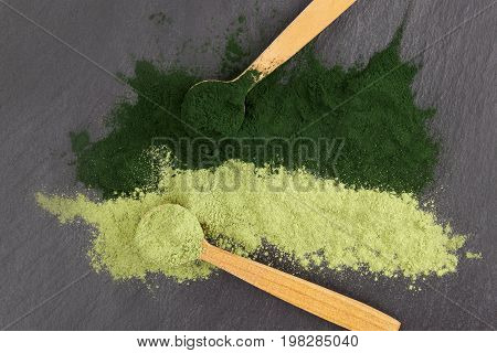 Chlorella and barley grass healthy green superfood powder in wooden spoons from above black surface