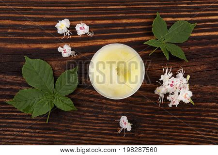 Chestnut cosmetics. Natural cosmetics. Moisturizer creme on wooden table with leaves and flowers herbal remedy. Skincare.