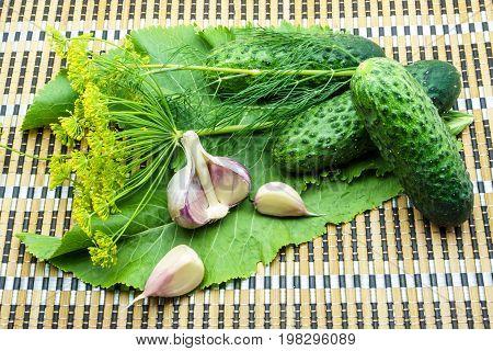 Cucumbers, Garlic, Dill And Horseradish On A Napkin