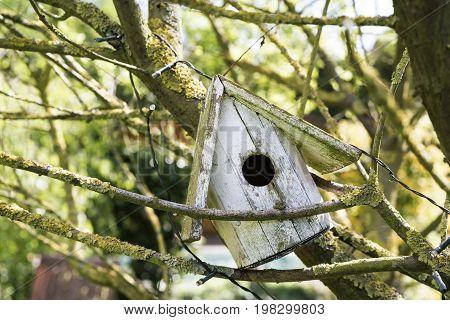 Old Homemade Wooden Bird Nesting Box