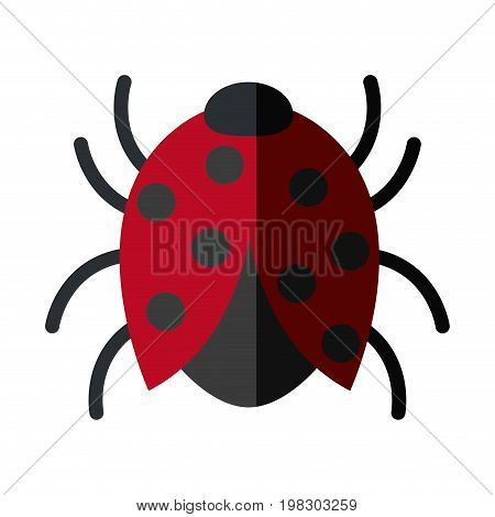 bug sign icon virus symbol software bug error vector illustration