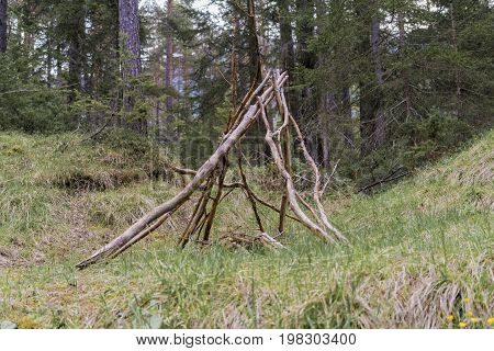 Branches Stacked In A Wigwam Formation In A Forest