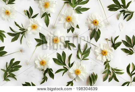 Flat Lay Floral Pattern Made Of White Peony Flowers, Green Leaves And Pasque-flower Seeds On White B