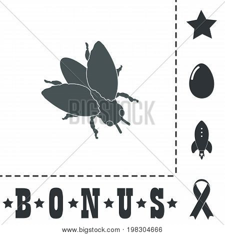 Stencil flies. Simple flat symbol icon on white background. Vector illustration pictogram and bonus icons