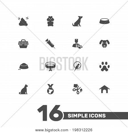 Collection Of Neckband , Food , Injection Elements.  Set Of 16 Animals Icons Set.