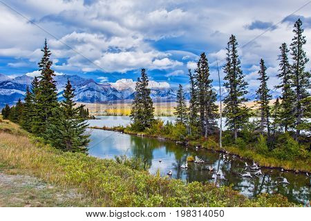 The valley along the Pocahontas road. Shallow-water lakes, picturesque firs and distant mountains. Lush clouds are reflected in the smooth water. Concept of car and ecological tourism