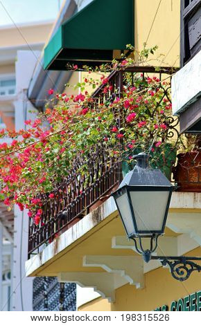 Wrought iron balcony entwined with Bouganvilla flowers on historic buildings