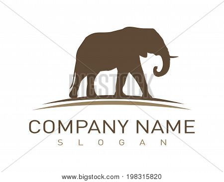 Elephant vector logotpe on a white background