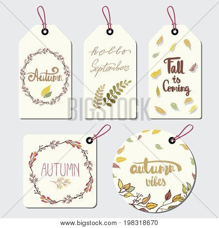 Collection of autumn typography for label. A collection of themed lable with design elements featuring leaves