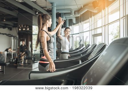 Young female friends exercise in the gym cardio