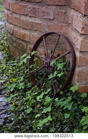 An old rusted wheel leaning against a brick wall amidst overgrown plants.