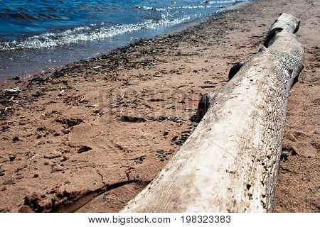 A large log on the sandy shore of the lake on a sunny day, the waves roll out onto the shore.