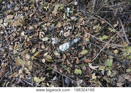 SHOREWOOD, ILLINOIS / UNITED STATES - DECEMBER 6, 2015: A discarded lemonade bottle lies among fallen dried leaves on the forest floor in the Hammel Woods Forest Preserve.