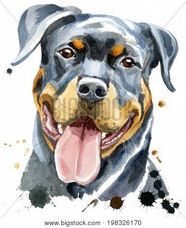 Cute Dog. Dog T-shirt graphics. watercolor rottweiler
