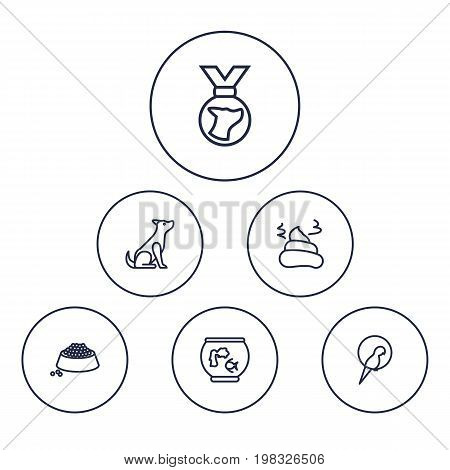 Collection Of Aquarium, Sitting, Parrot And Other Elements.  Set Of 6 Pets Outline Icons Set.