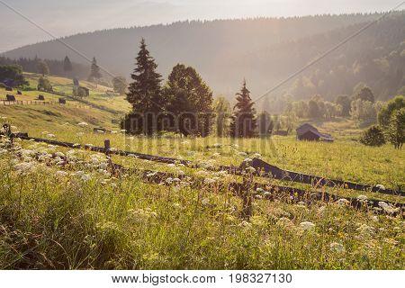 Summer sunrise in the village of Bucovina, Romania