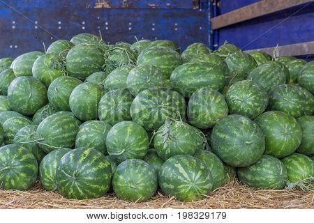 Farmers Market And A Truckload Of Watermelons