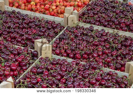 Farmers Market Organic Cherrys In A Wooden Crates