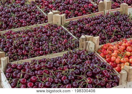Farmers Market Organic Cherrys In A Wooden Crates 2
