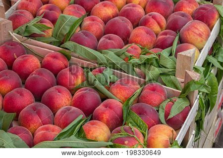 Farmers Market Peaches In A Wooden Crates 3