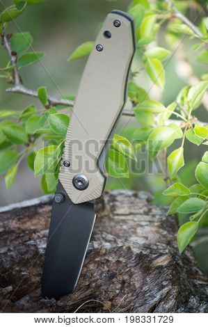 Pocket knife with a black blade and a light handle is stuck in the wood on the background of young green leaves