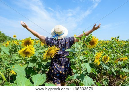 Adult Woman In Straw Hat Standing Backward In Sunflower Field, Arms Raised To Sky, Celebrating Freed