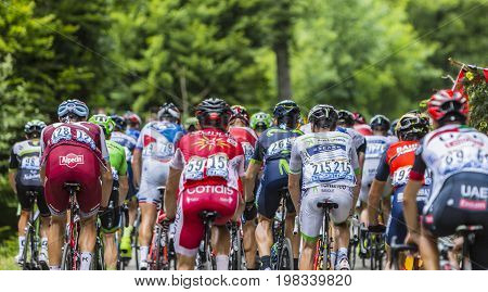 Mont du Chat France - July 9 2017: Rear image of the peloton climbing the road on Mont du Chat during the stage 9 of Tour de France 2017.