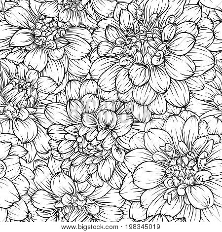 beautiful monochrome black and white seamless background dahlia Hand-drawn. Design for greeting cards and invitations of wedding birthday Valentine s Day mother s day and other seasonal holiday