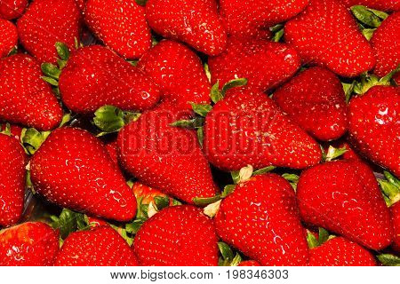Red Strawberries, Background Or Texture