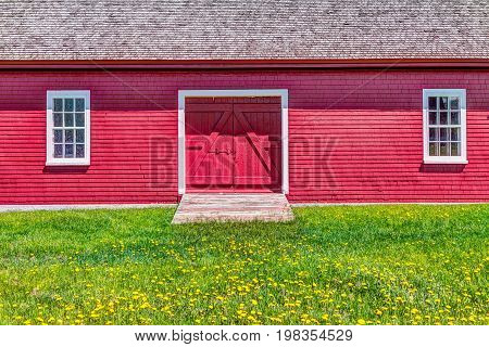 Red painted bright vintage shed with yellow dandelion flowers in summer landscape field in countryside