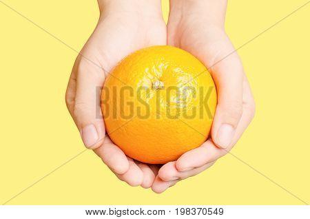 Fresh Navel orange fruit holding by hand isolated on orange background