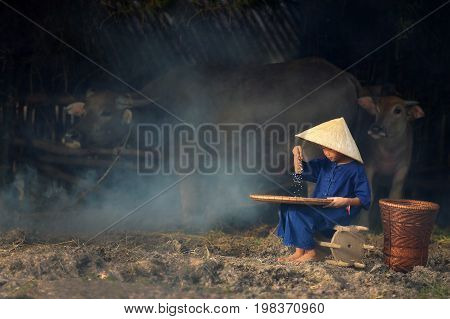 A peasant boy is working on a grain of rice with a buffalo backdrop.