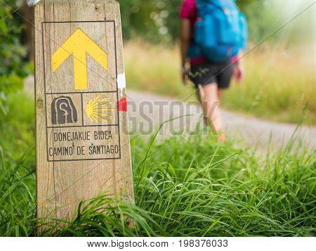 pilgrimage at Camino de Santiago de Compostela poster