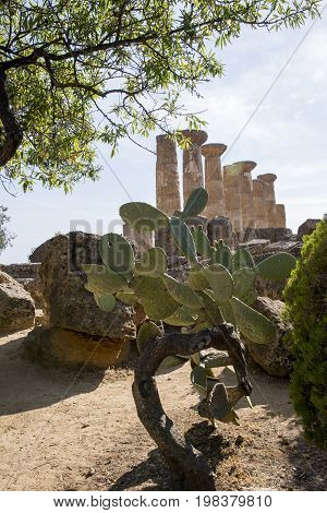 Ruins of Ercole temple in the Valley of the Temples Agrigento Sicily island Italy - May 22nd 2017