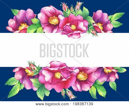 Banner with flowering pink roses (names: dog rose, rosa canina, Japanese rose, Rosa rugosa, sweet briar, eglantine), isolated on dark blue background. Watercolor hand drawn painting illustration.