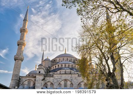 Exterior low angle day shot of domes of Sultan Ahmed Mosque (Blue Mosque) an Ottoman imperial mosque located in Sultan Ahmed Square Istanbul Turkey