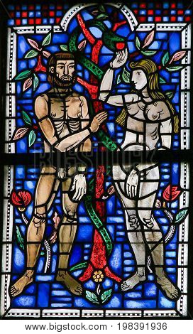Stained Glass In Worms - Adam And Eve