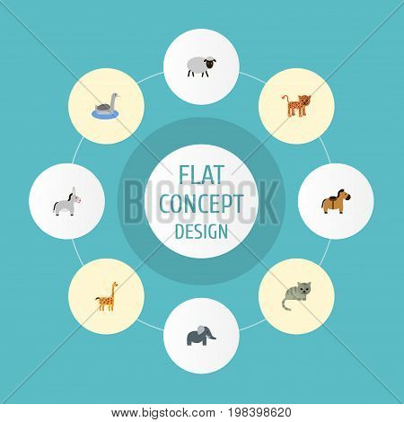 Flat Icons Mutton, Waterbird, Jackass And Other Vector Elements