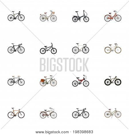 Realistic Retro, Adolescent, Hybrid Velocipede And Other Vector Elements