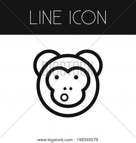 Ape Vector Element Can Be Used For Monkey, Ape, Baboon Design Concept.  Isolated Monkey Outline.